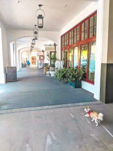 Rosemary Beach shopping